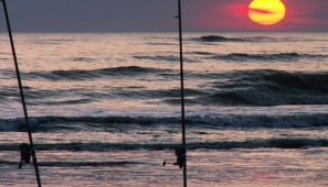 comprar-caña-surfcasting