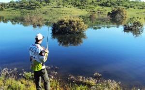 pesca-black-bass