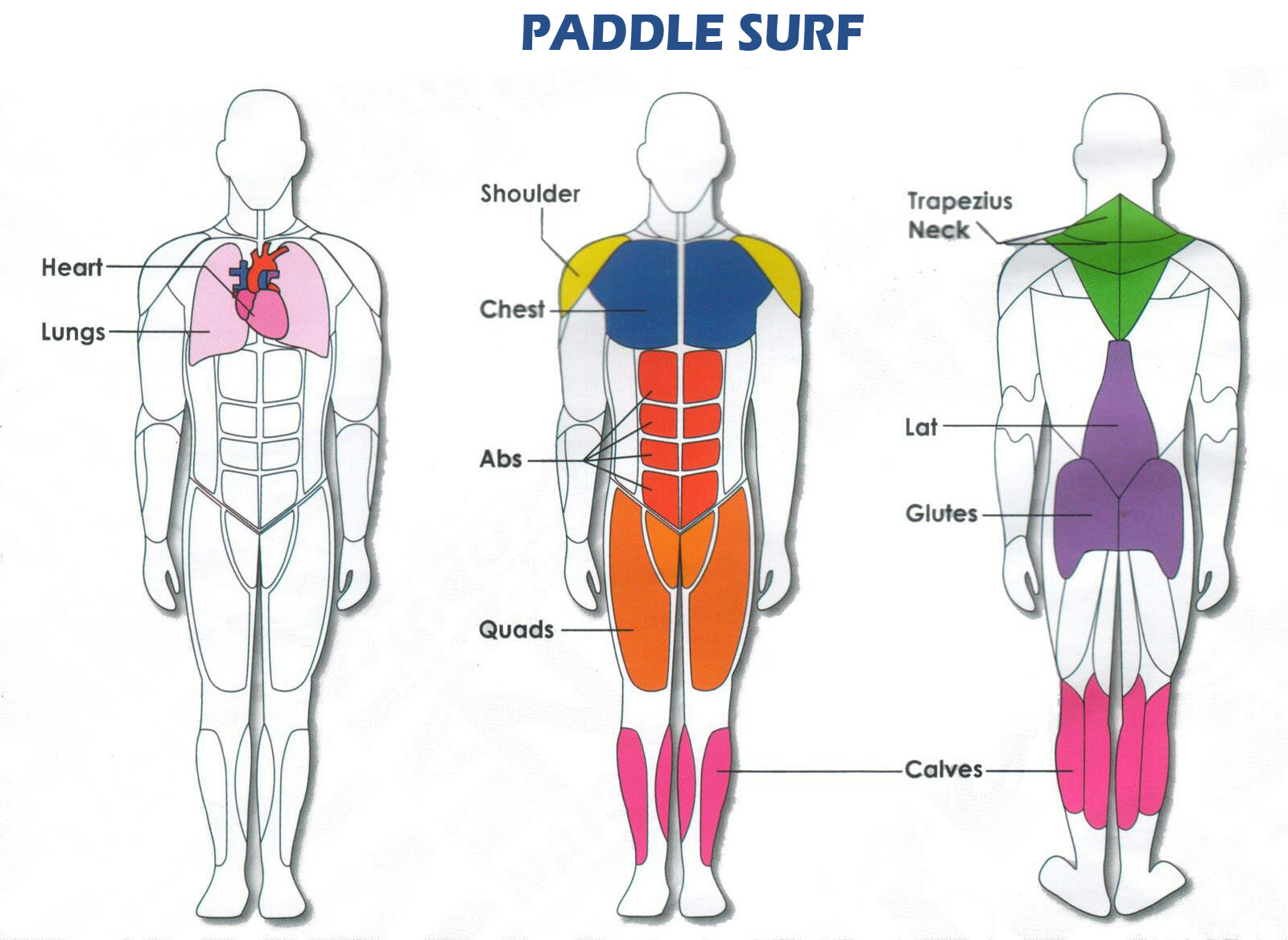 tabla de paddle surf as k