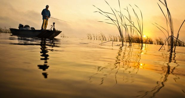 sondas para pescar