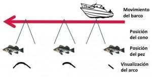 formas de los peces en la sonda de pesca